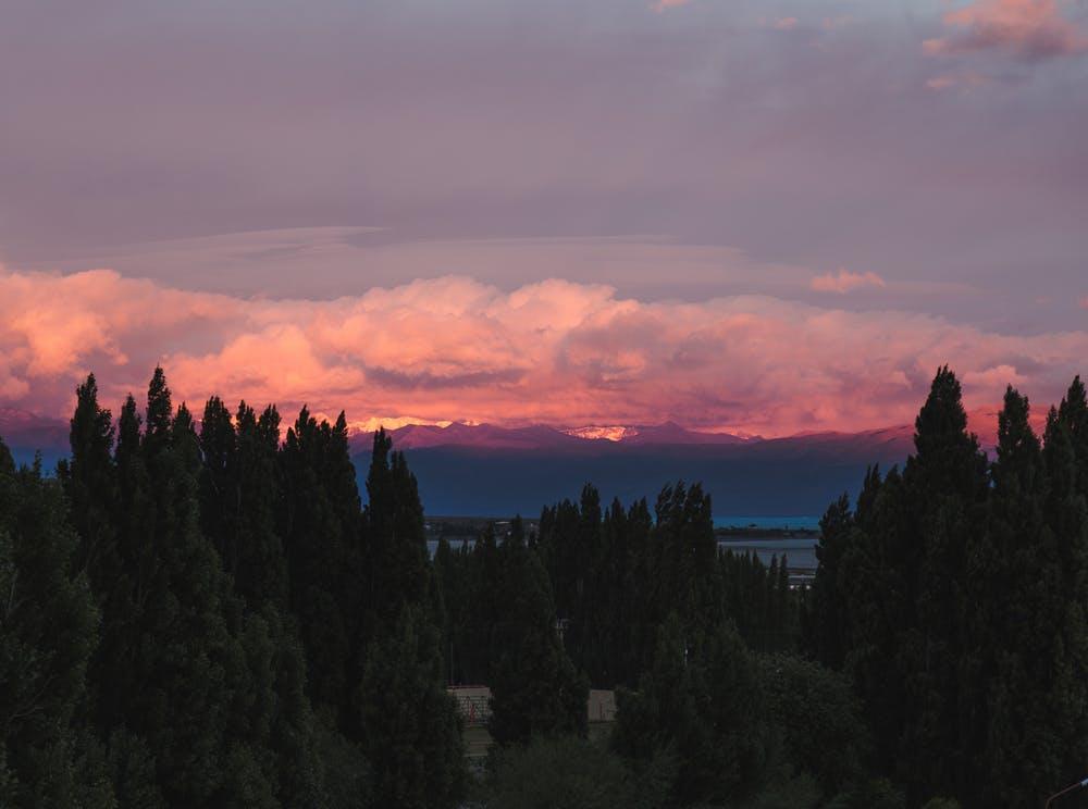 Vista tramonto dietro una distesa di alberi