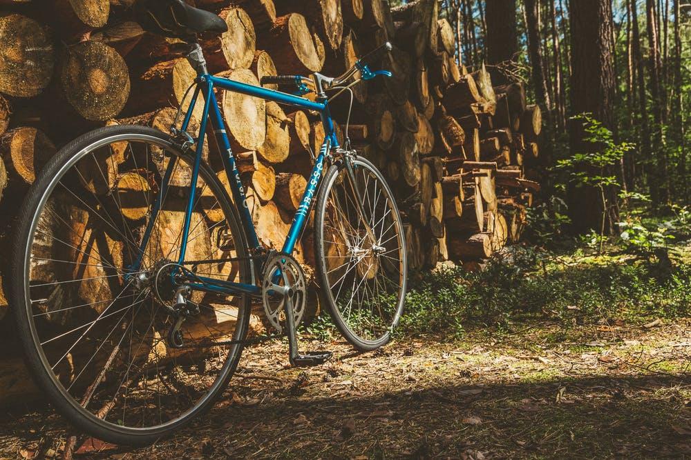 Foto di una bici blu appoggiata su un legame con vicino degli alberi verdi