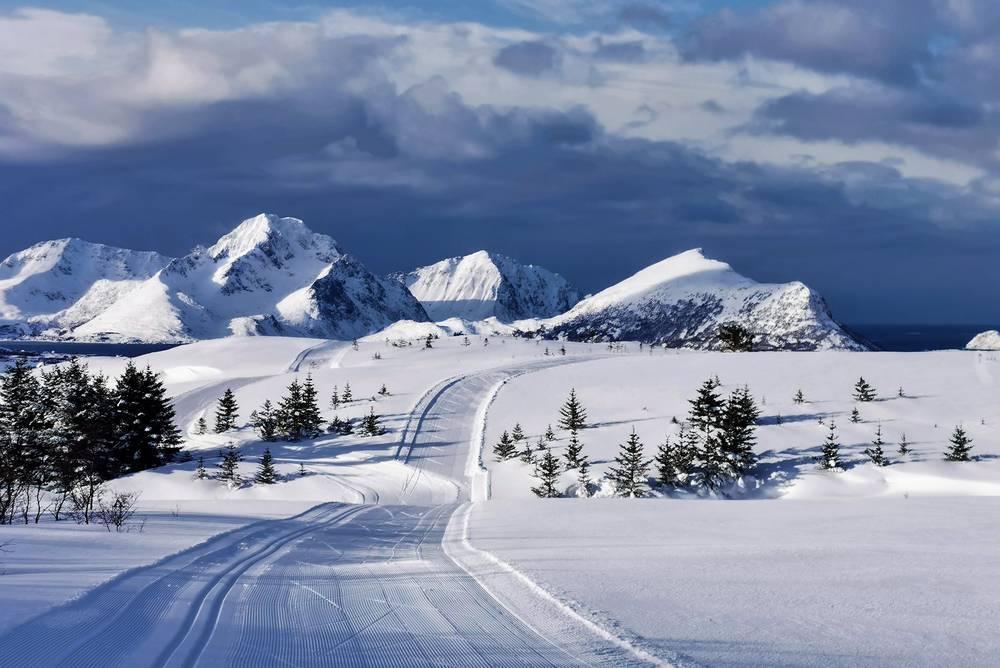 Vista pista da scii con alberi sparsi e montagne coperte di neve con un cielo grigio e nuvoloso