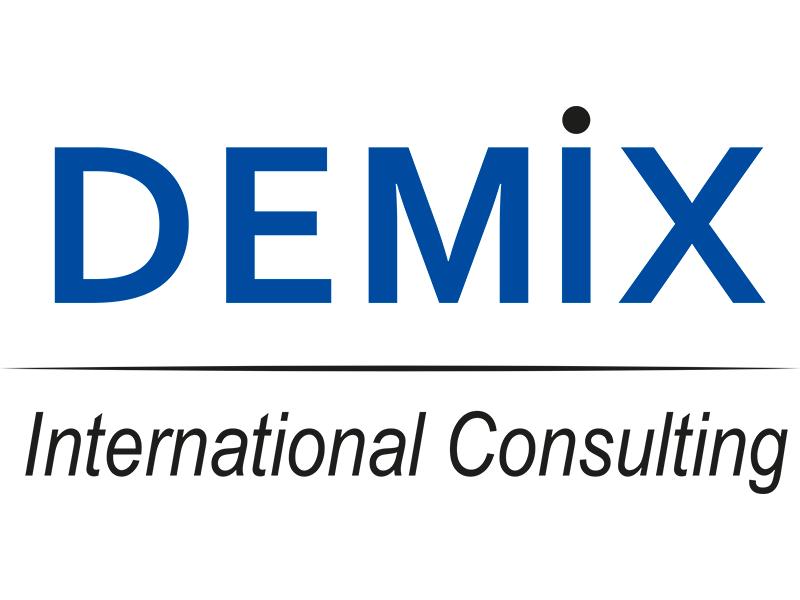 demix intern. consulting